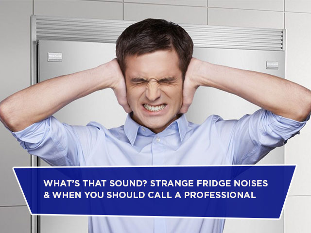 What's That Sound? Strange Fridge Noises & When You Should Call a Professional