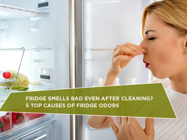 Fridge Smells Bad Even After Cleaning? 5 Top Causes of Fridge Odors